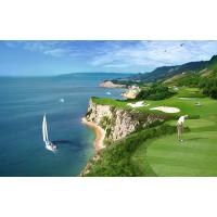 Да поиграем голф!