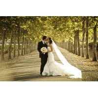 Сватбени поверия – малки хитринки за успешен брак