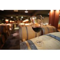 Българското вино - плод на древни традиции и обичаи